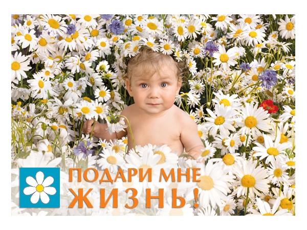 малыш в ромашках.jpg